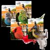AFP naturel bouncing birds01©KATSIGN