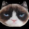 grumpy cat kussen01©KATSHOPBYKATSIGN